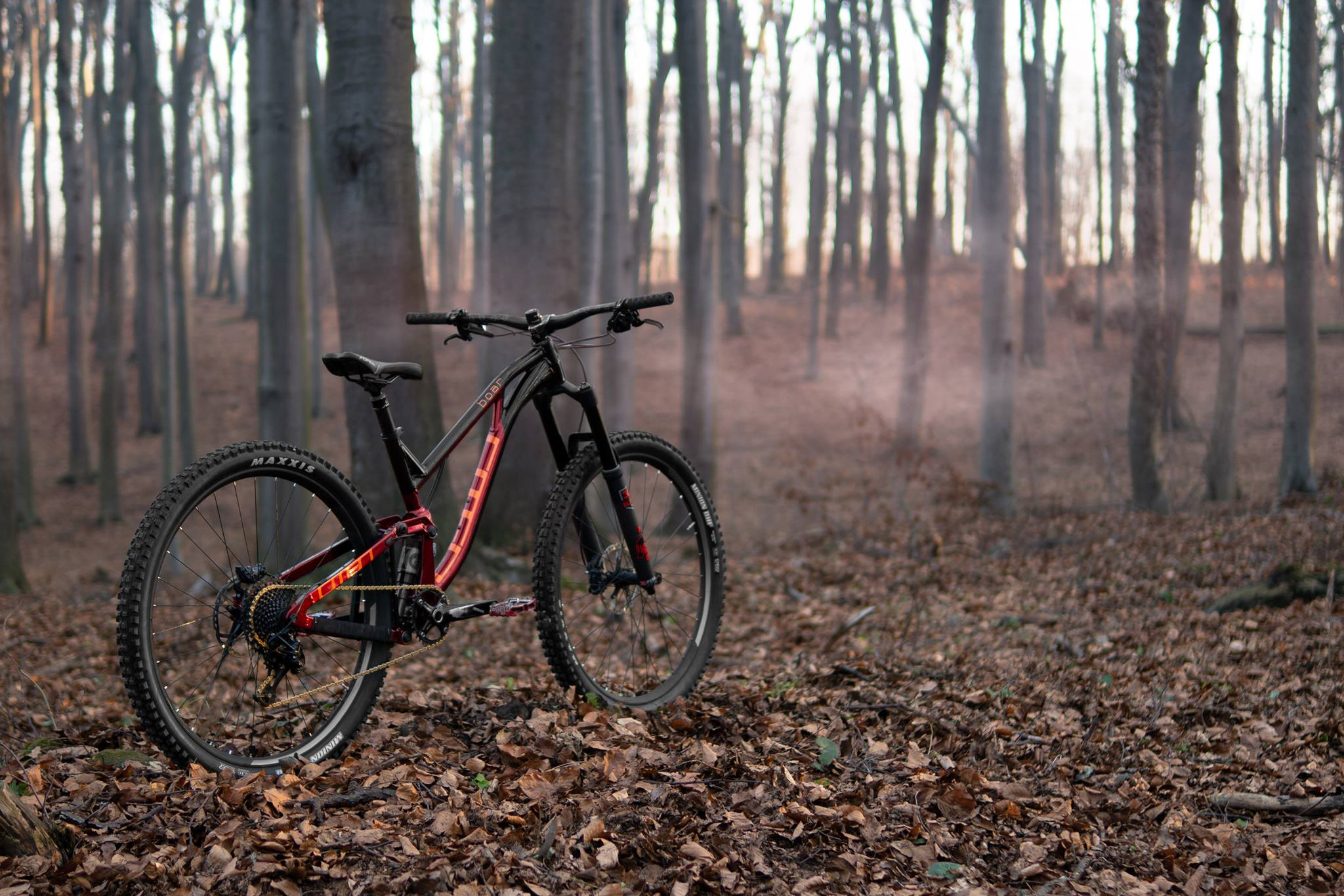 Omen Racing Boar 29er 1